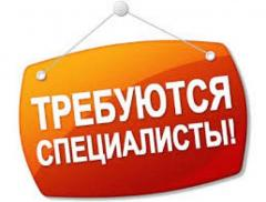 Работа  в Москве  и Московской области