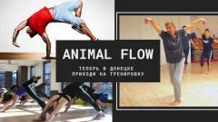 Animal Flow в Донецке. Регулярные тренировки